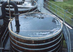 Foto: scotchwhisky.com